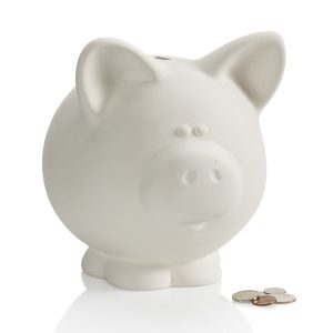 Big Piggy Bank